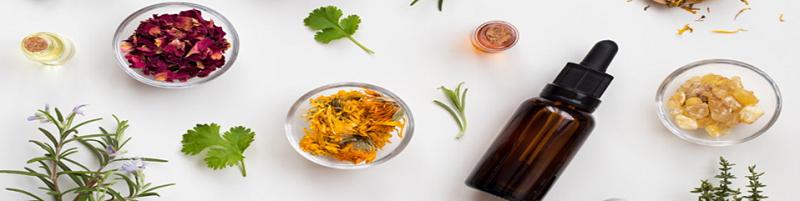 Indian Herbs | NosgOrgano