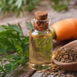 Carrot Seed Oil | NosgOrgano