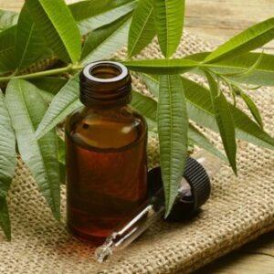 Tea Tree Oil| NosgOrgano