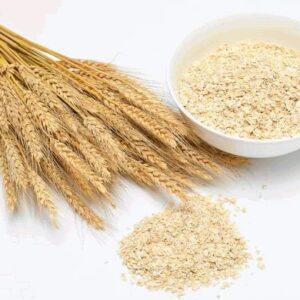 Wheat Germ Powder   NosgOrgano