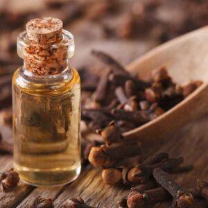 clove oil | NosgOrgano