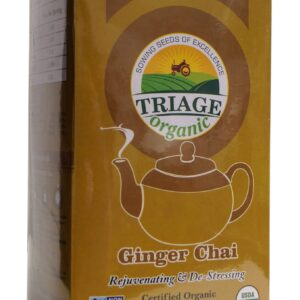 ginger chai web   NosgOrgano